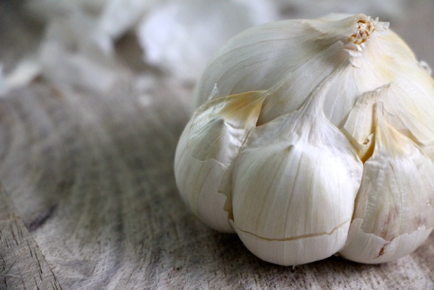 garlic head up close