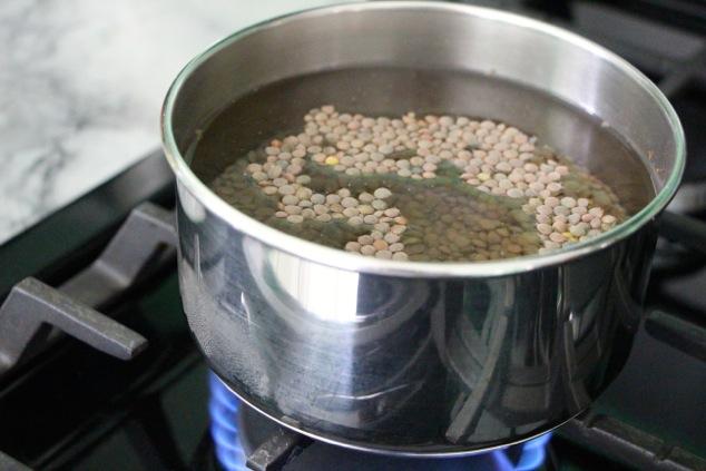 brown lentils in a saucepan