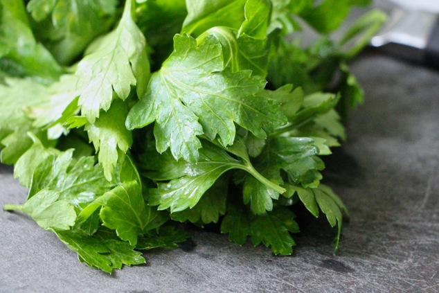 parsley leaves close up