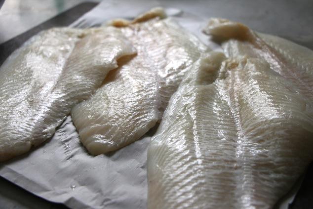 flounder fish filet